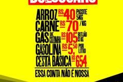 bolsocaroredes5