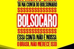 bolsocaroredes6