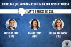 SENADORES-PREVIDENCIA-MATO-GROSSO-DO-SUL